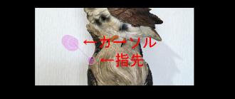 Point Blur06-2